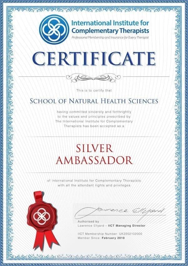 SNHS IICT Silver Ambassador