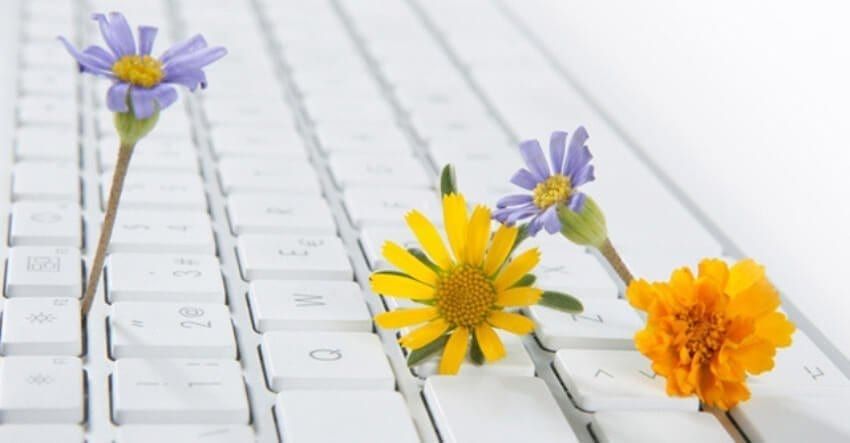 spring flowers on a keyboard