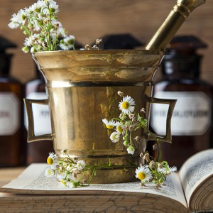 Advanced Herbalism courses at The School of Natural Health Sciences