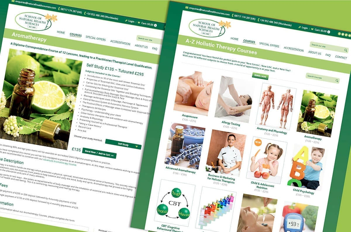 New website for The School of Natural Health Sciences