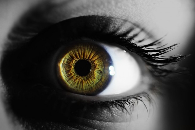 A look into Iridology. The windows to your state of health.