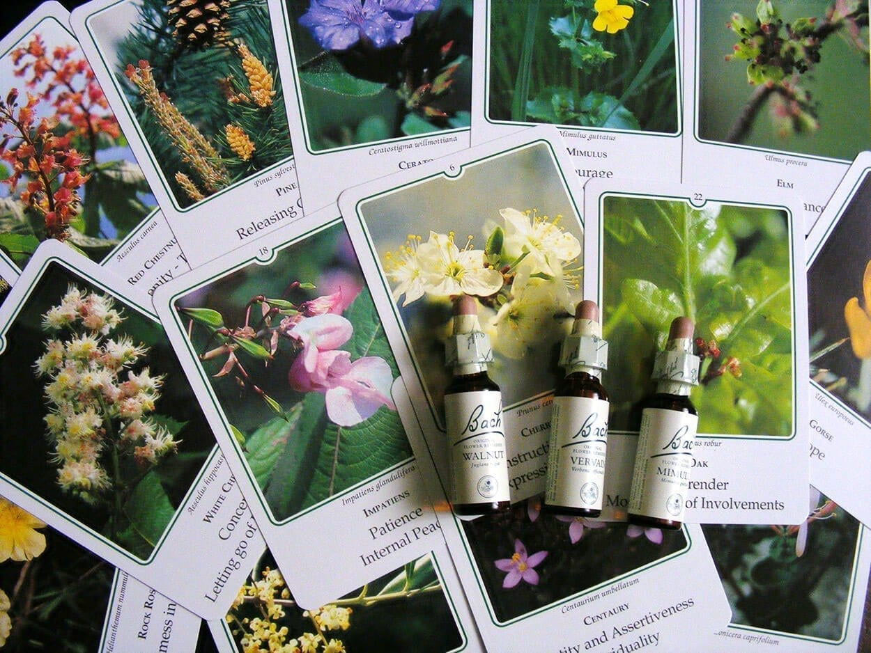 Healing with Bach Flower Remedies