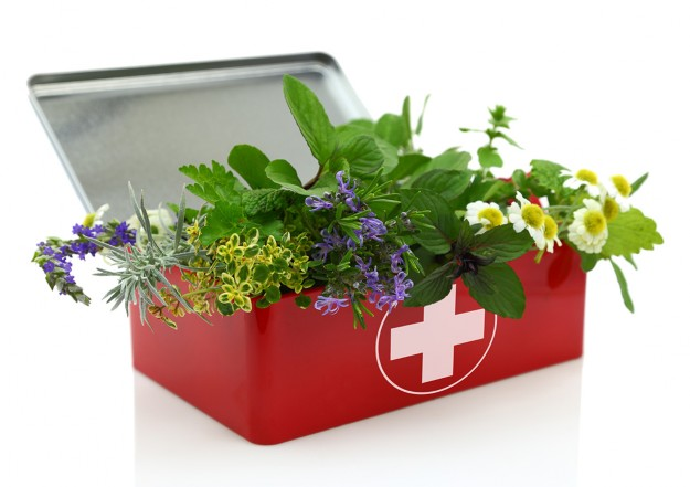4 must-haves for your holistic first aid kit
