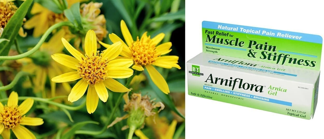 Arnica - 4 must-haves for your holistic first aid kit