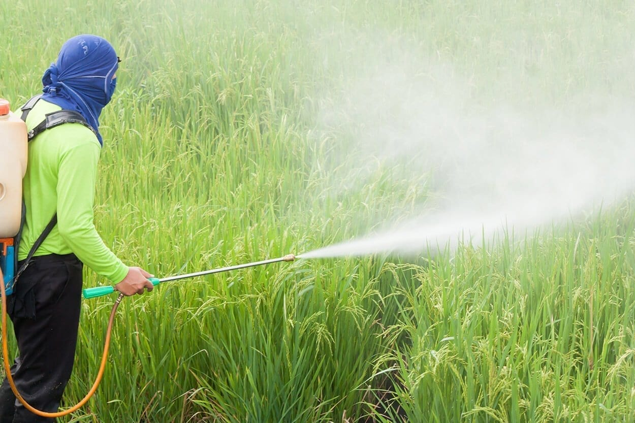 Pesticide Spraying - A guide to holistic shopping - Part 1