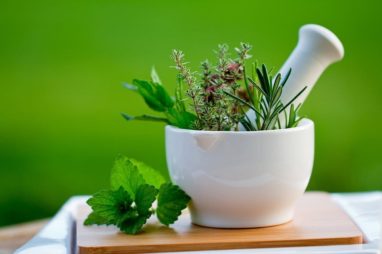 Interview with a herbalist-Holistic