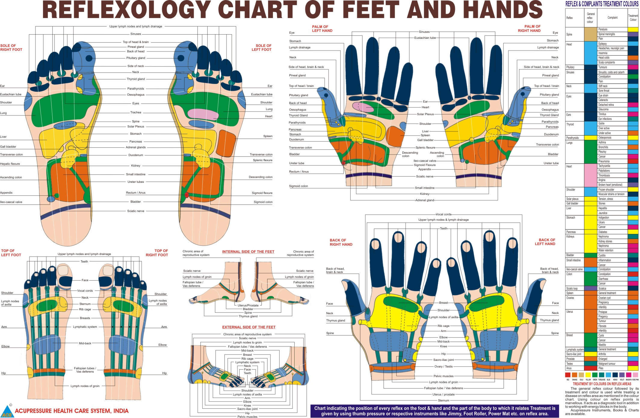 SNHS Hand And Foot Reflexology Chart