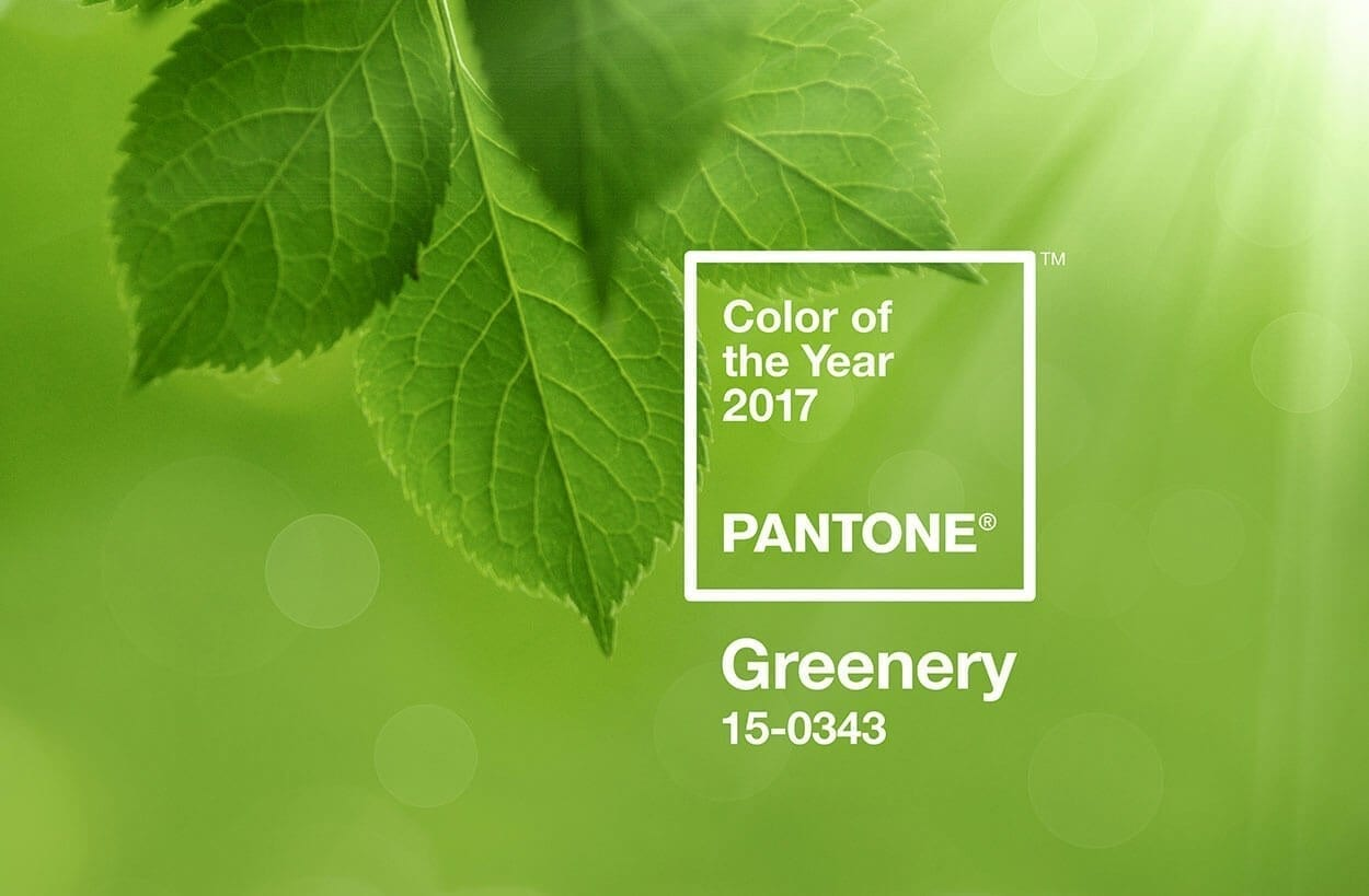 Greenery. Colour Therapy for the New Year