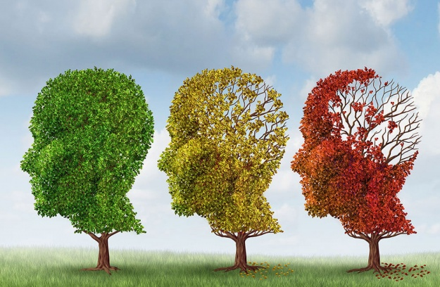 Implement these 7 habits to help prevent dementia