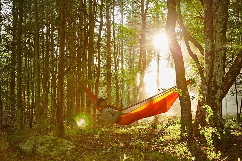 man in hammock in the woods