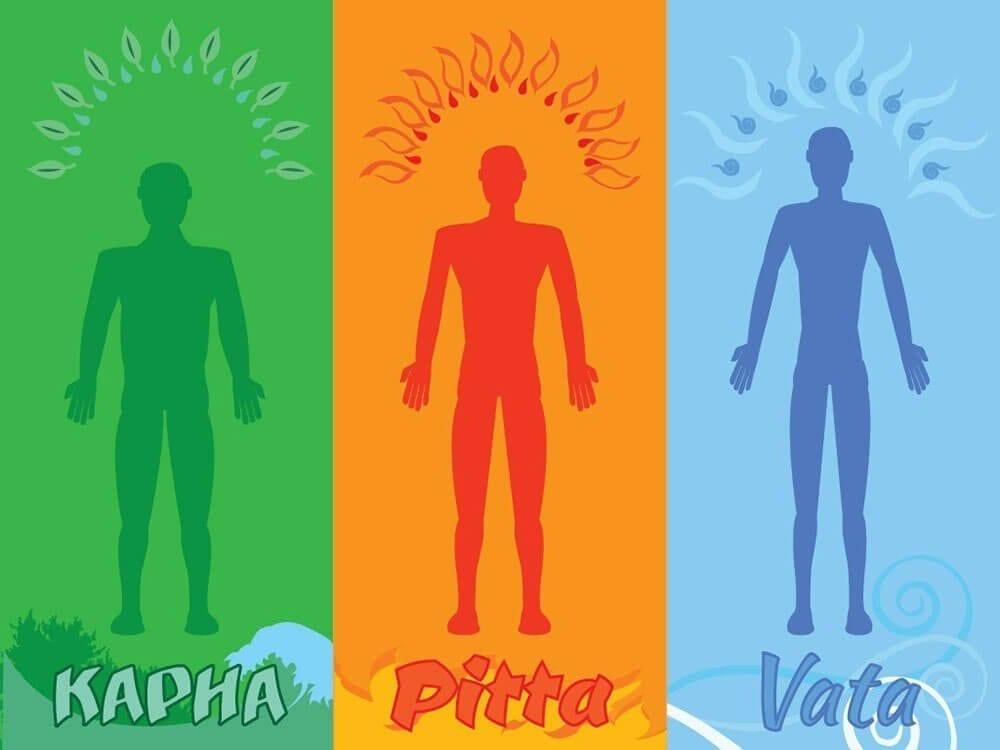 ayurvedic body type