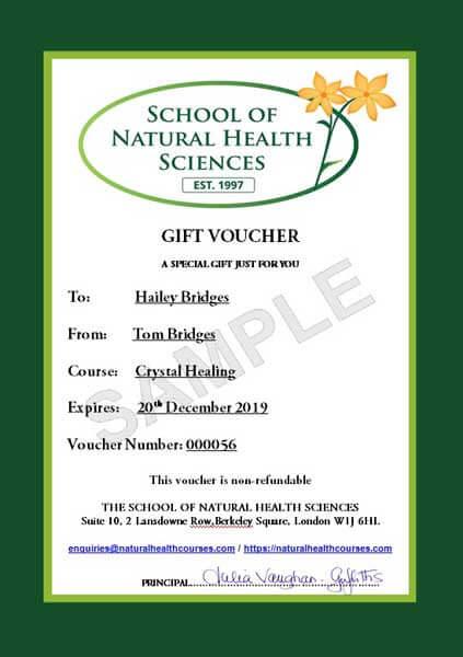 snhs gift voucher example